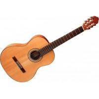 Гитара Eurofon GSC-11